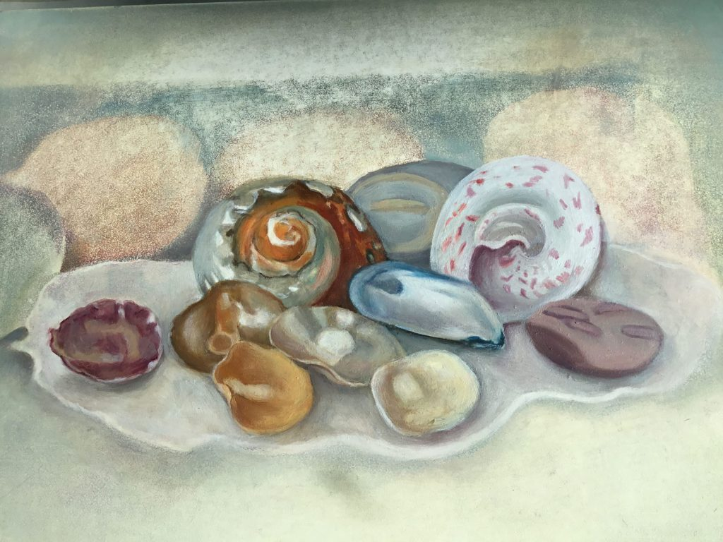 This image has an empty alt attribute; its file name is Shells-gesso-panel-23x31cms-1024x768.jpg